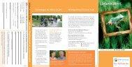 Broschüre [PDF, 0,5 MB] - NRW-Stiftung