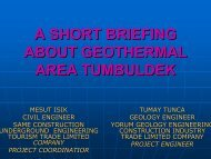 A SHORT BRIEFING ABOUT GEOTHERMAL AREA TUMBULDEK