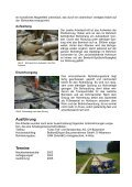 Gemeinde Reigoldswil Umlegung der Erdgasleitung ... - Nodig-Bau.de - Page 3