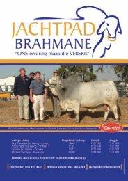 Deel 3 - Brahman Breeders Society of South Africa