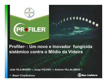 Simposium Alentejo Profiler_en - Vinhos do Alentejo