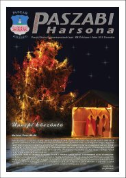 Paszab 2010 december 01.eps - Paszab Község Honlapja