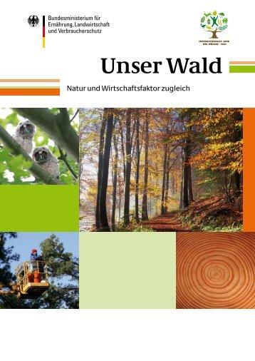 Unser Wald: Natur und Wirtschaftsfaktor zugleich - Waldkulturerbe.de