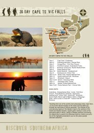 20 DAY CAPE TO VIC FALLS - African Overland Safari Tours