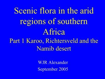 Scenic flora in the arid regions of southern Africa