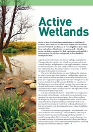 In the Active Wetlands project the Estonian and Finnish ... - WWF