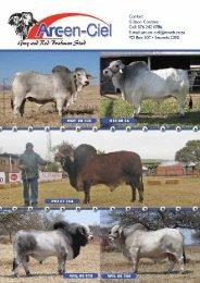 Deel 1 - Brahman Breeders Society of South Africa