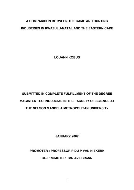 nmmu mba thesis