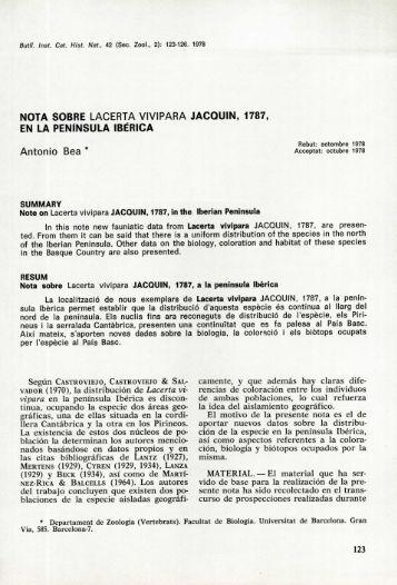 """Nota sobre """"Lacerta vivipara"""" Jacquin, 1787, en la península ... - Raco"""