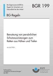 """BGR 199 """"Benutzung von persönlichen ... - Industrial Alpinists Vienna"""