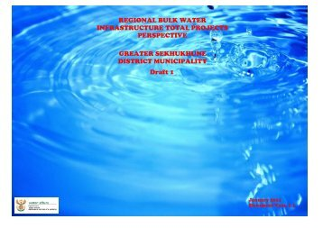 REGIONAL BULK WATER INFRASTRUCTURE ... - DWA Home Page