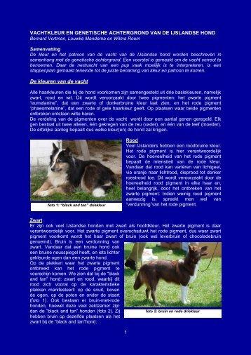 Kleur van de vacht - Vereniging voor de IJslandse Hond