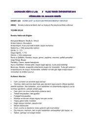 Den. 3 Borik asit.pdf - yarbis