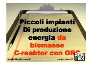 Ing. R. Pirotta - Progetto BIOMASSE