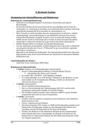 8-Seminar-Stoffwechsel-der-Aminosaeuren_2 - wilmnet.de