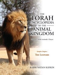 Download a FREE sample chapter on the leopard here! - Zoo Torah