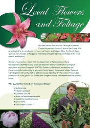 Why buy locally produced cut flowers and foliage (PDF 1.8 MB)