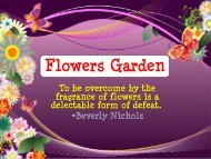Flower Fragrances - Nature's Garden Candles