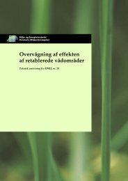 Overvågning af effekten af retablerede vådområder - Danmarks ...