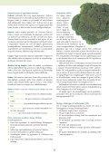 klik her - Sund-Kost - Page 5