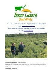 E-mail: shawnturner@lantic - Boom Lusern