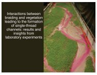 Impacts of vegetation at local scales