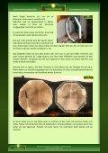 Bauanleitung einer eckigen Schamanentrommel - Schamanenstube - Seite 2