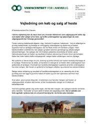 Vejledning om køb og salg af heste - LandbrugsInfo