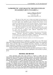 saprophytic and parasytic micomycetes on sugar beet (beta vulgaris l.)