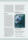 retningslinjer for opdræt og udsætning af fasaner - Page 6