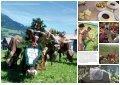 NEU: Projektbericht als Download - Institut für ökologischen ... - Seite 6