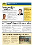 Nr 6 - ASVT - Page 5