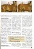 Dokumentation - Ansager Dyrehospital ApS - Page 2