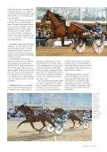 Travhästen nr 1 - ASVT - Page 5