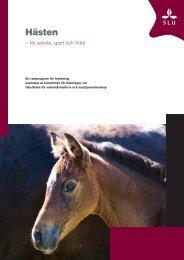 Hästen - för arbete, sport och fritid - SLU