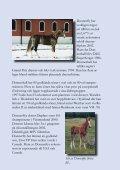 STUTERI TEAM PIAFF - Page 7