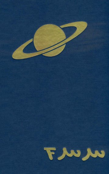 Saturn - Eine deutsche Karriere - Waffenschmidt - Saturn