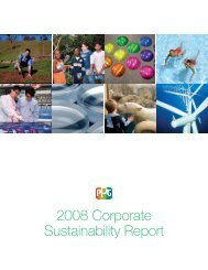 Download the 2008 Corporate Sustainability Report - PPG Industries