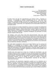 GALANO Crisis y sustentabilidad - Secretaria de Ambiente y ...