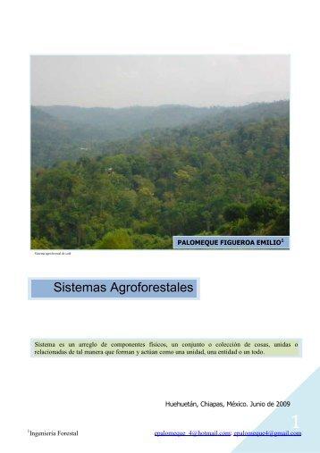 SISTEMAS AGROFORESTALES - Monografias.com
