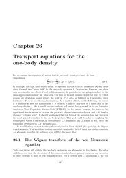 Chapter 26 Transport equations for the one-body density