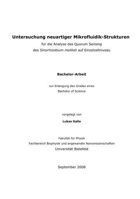Untersuchung neuartiger Mikrofluidik-Strukturen - Fakultät für Physik ...