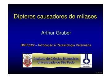 Arthur Gruber - USP