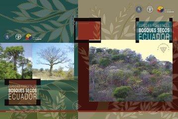 Bosques Secos - Ministerio del Ambiente