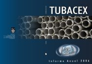 informe anual 2006 - Tubacex
