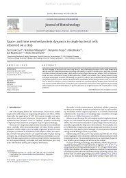 Author's personal copy - Fakultät für Physik