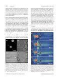 Bioanalysis in structured microfluidic systems - Page 4