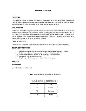 03 AGP 68 RESUMEN EJECUTIVO.pdf - Repositorio UTN