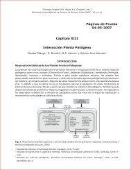 Interacción Planta Patógeno
