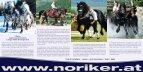 Associazione austriaca degli Allevatori del cavallo Norico ... - Page 2